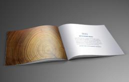 Bryn Mawr Trust brochure inside design by advertising agency in Philadelphia